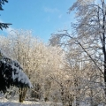 winter19