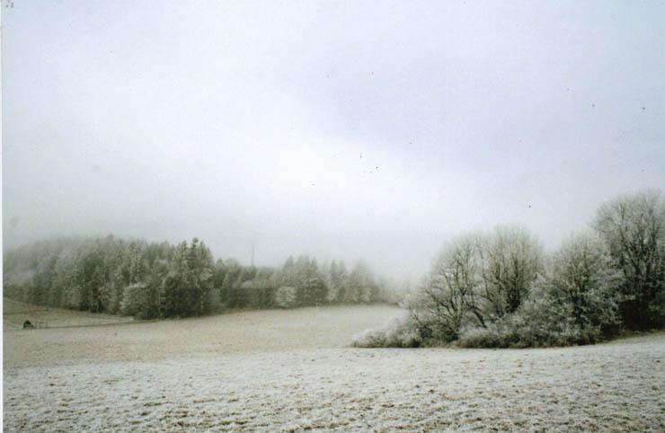 winter36